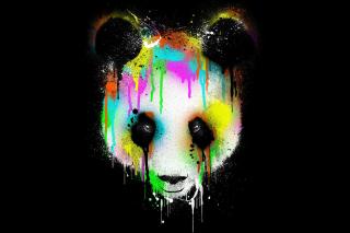 Crying Panda - Obrázkek zdarma pro 1366x768