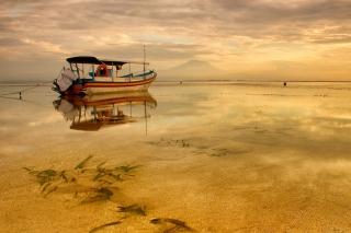 Silent Morning Picture for Android, iPhone and iPad