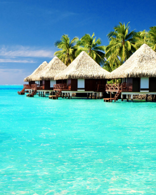 Maldives Islands best Destination for Honeymoon - Obrázkek zdarma pro 132x176