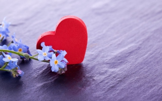 Love And Blue Flowers Background for Android, iPhone and iPad