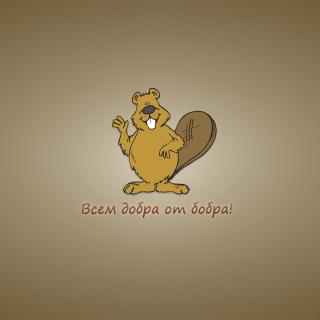 Kind Beaver - Obrázkek zdarma pro iPad 2