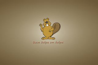 Kind Beaver Wallpaper for Android, iPhone and iPad