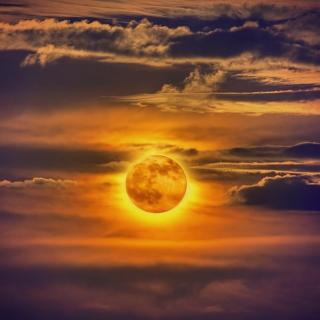 Golden Moon - Obrázkek zdarma pro 208x208