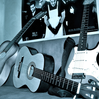 Rammstein guitars for metal music - Obrázkek zdarma pro 320x320
