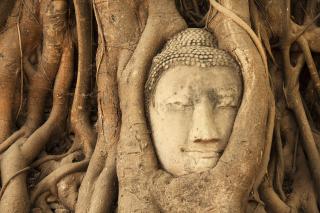 Wooden Buddha In Thailand - Obrázkek zdarma pro Android 1200x1024