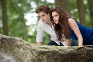 Twilight - Obrázkek zdarma pro 1024x600