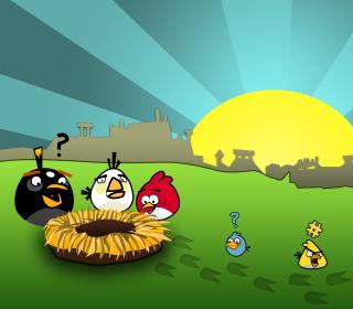 Angry Birds Game - Obrázkek zdarma pro iPad