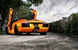 Orange Lamborghini Murcielago Wallpaper for Android, iPhone and iPad