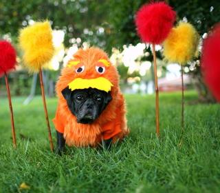 Carnival Dog - Obrázkek zdarma pro iPad 2