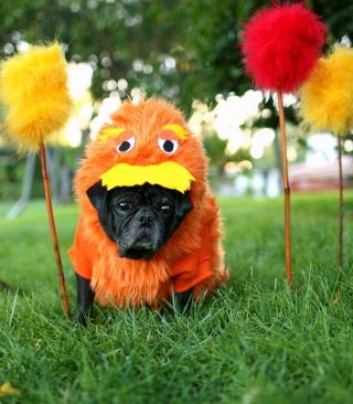 Carnival Dog - Obrázkek zdarma pro Nokia 206 Asha