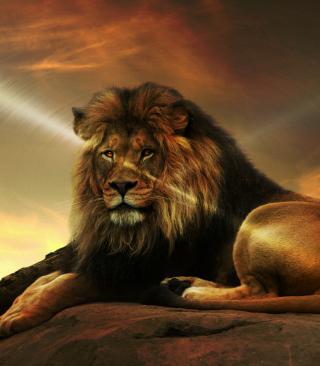 Lion - Obrázkek zdarma pro 128x160