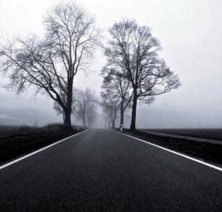 Black Road - Obrázkek zdarma pro 320x320