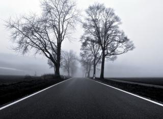 Black Road - Obrázkek zdarma pro Fullscreen Desktop 1024x768