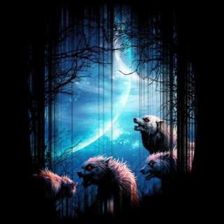Wolverines At Night - Obrázkek zdarma pro 208x208