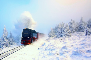Winter Train Ride - Obrázkek zdarma