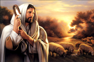 Jesus Good Shepherd Picture for Android, iPhone and iPad