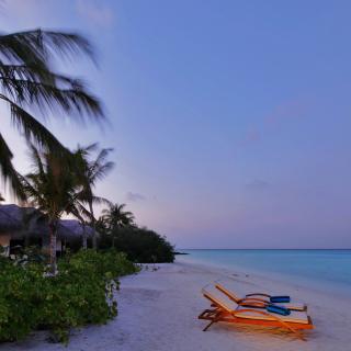 Exotic Beach Rosalie Bay, Dominica - Obrázkek zdarma pro iPad 2