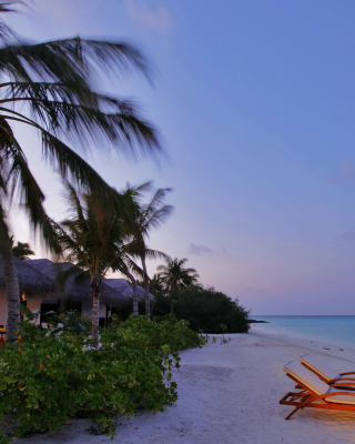 Exotic Beach Rosalie Bay, Dominica - Obrázkek zdarma pro Nokia Asha 303