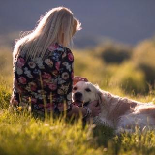 Girl with Retriever Dog - Obrázkek zdarma pro 128x128
