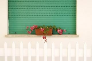 Balcony - Obrázkek zdarma pro LG Nexus 5