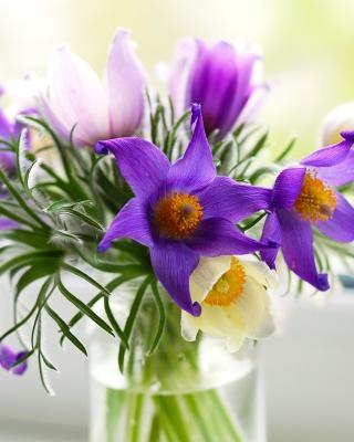 Purple Pulsatilla Flowers - Obrázkek zdarma pro Nokia Asha 202