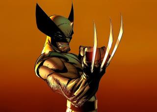 Wolverine - Obrázkek zdarma pro Nokia Asha 210