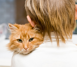 I Love My Cat - Obrázkek zdarma pro 320x320
