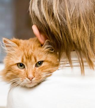I Love My Cat - Obrázkek zdarma pro Nokia Asha 503