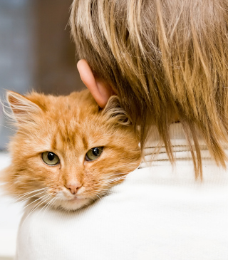 I Love My Cat - Obrázkek zdarma pro 480x640