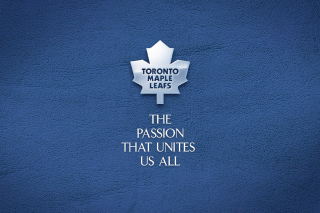 Toronto Maple Leafs NHL Logo - Obrázkek zdarma pro 480x320