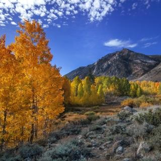 Wonderful mountain landscape - Obrázkek zdarma pro iPad mini