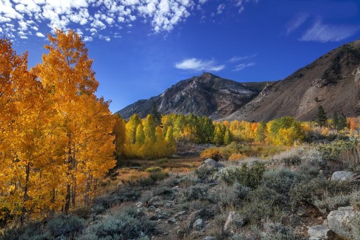 Wonderful mountain landscape wallpaper