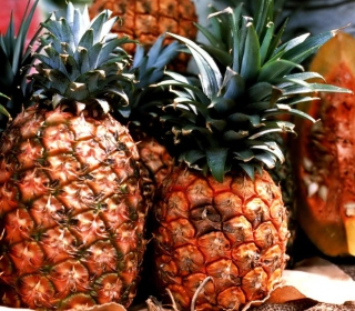 Pineapples - Obrázkek zdarma pro 1024x1024