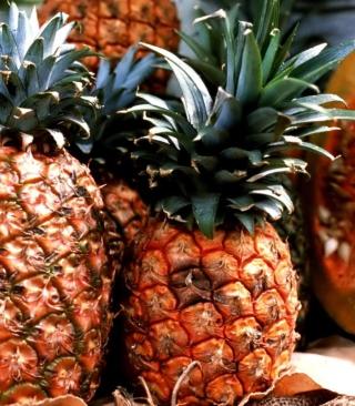 Pineapples - Obrázkek zdarma pro Nokia Asha 305