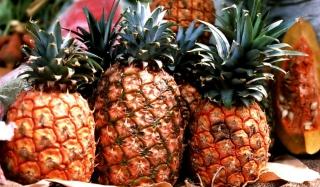 Pineapples - Obrázkek zdarma pro 1024x600