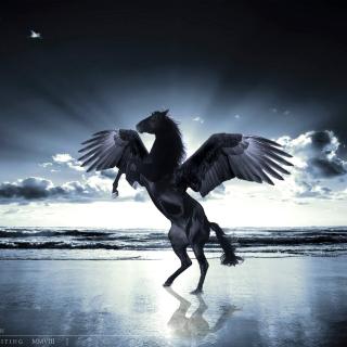 Pegasus - Obrázkek zdarma pro 128x128