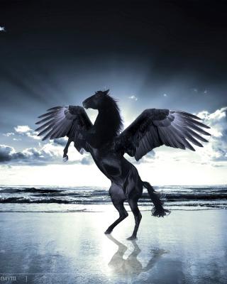 Pegasus - Obrázkek zdarma pro Nokia Asha 503