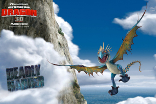How to Train Your Dragon - Obrázkek zdarma pro Nokia Asha 210