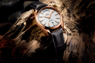 Omega Watch - Obrázkek zdarma pro Samsung Galaxy Tab 4 7.0 LTE