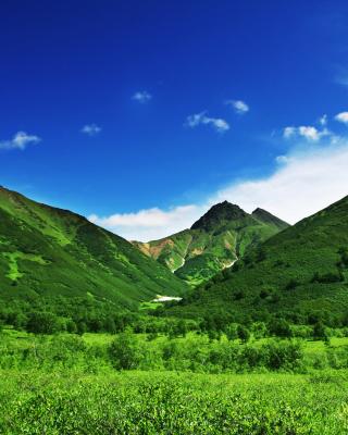 Green Hills - Obrázkek zdarma pro Nokia C-Series