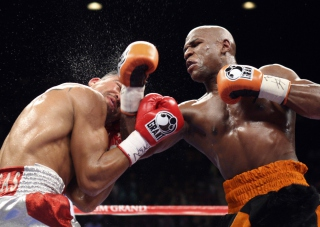 Floyd Mayweather Picture for Android, iPhone and iPad