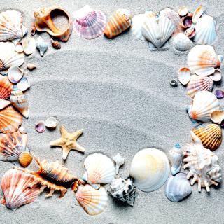 Australian Seashells Favors - Obrázkek zdarma pro iPad