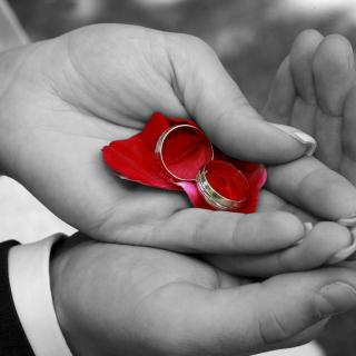 Engagement Rings - Obrázkek zdarma pro iPad 2