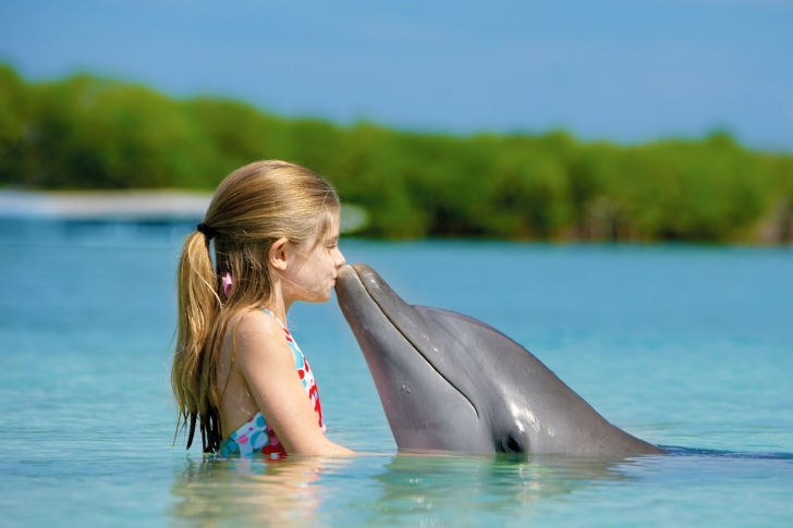 Girl and dolphin kiss wallpaper