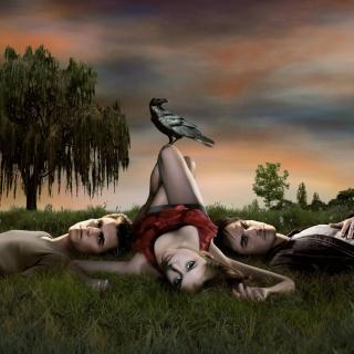 The Vampire Diaries Tv Series - Obrázkek zdarma pro 208x208