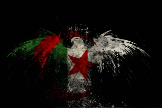 Free Algerian Flag Picture for Android, iPhone and iPad