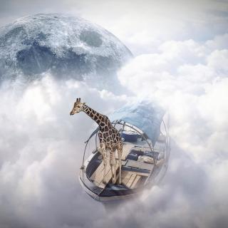 Giraffe Traveler - Obrázkek zdarma pro iPad