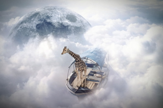 Giraffe Traveler Background for Android, iPhone and iPad