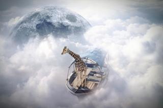 Giraffe Traveler - Obrázkek zdarma pro HTC Hero