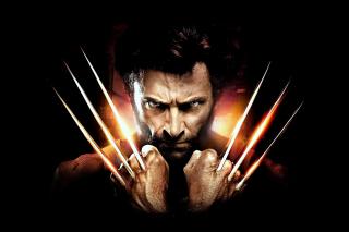 The Wolverine - Obrázkek zdarma pro 1400x1050